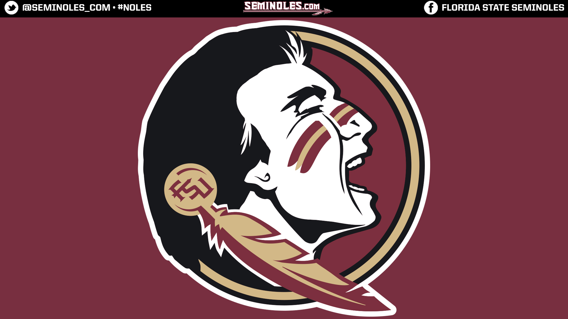 Background Desktop Fsu