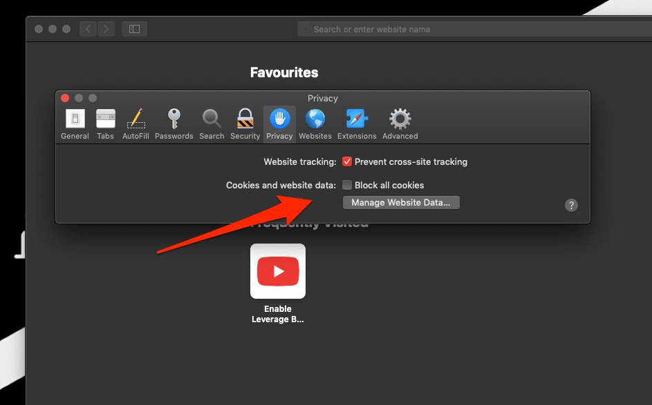 Allow Cookies and Website Cache Data on Safari Mac