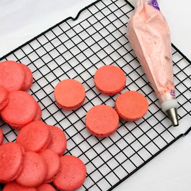 French Macarons:Butter with a side of bread
