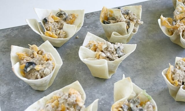 Butter With a Side of Bread: Cheesy Ranch Ground Turkey Wontons