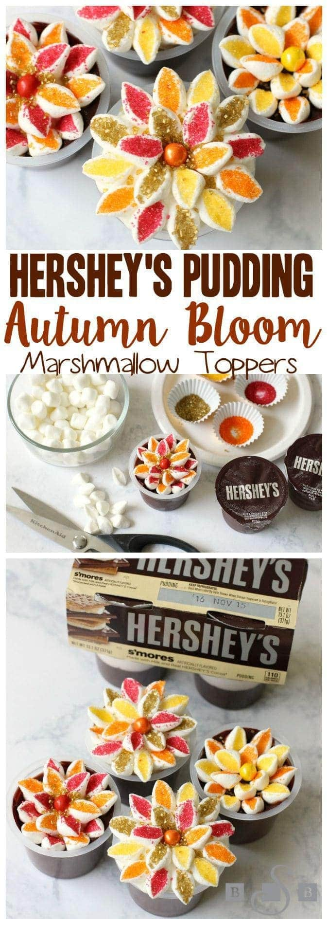 HERSHEY'S PUDDING AUTUMN BLOOM TOPPERS