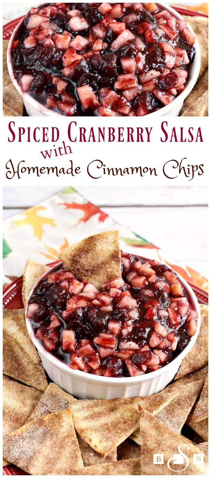 Spiced Cranberry Salsa with Homemade Cinnamon Chips - Butter With a Side of Bread