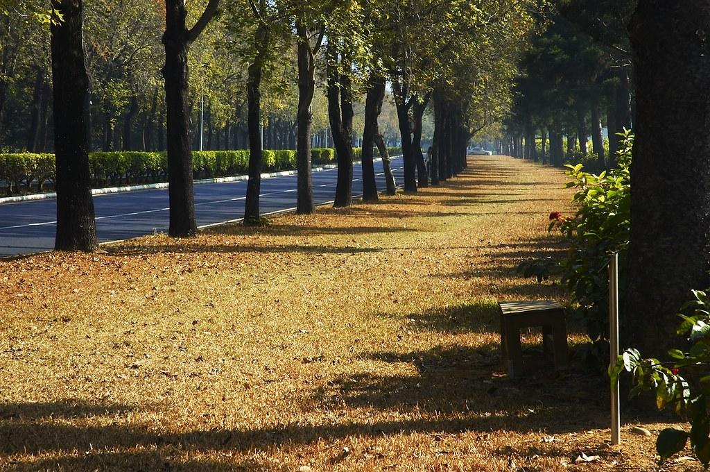 屏東科技大學校園 King F Flickr