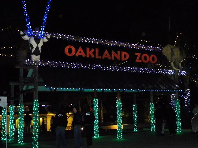 Oakland Zoo Night Lights