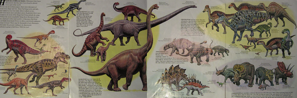 Quot Zoobooks Dinosaurs Quot Poster The Beloved Dinosaurs