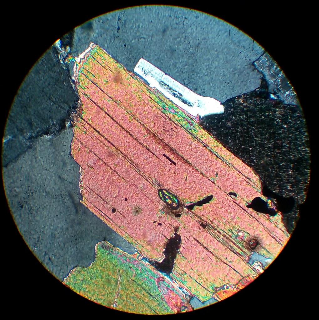 Biotite With Zircon In Cordieritic Granite 30 181 M Thin Sec