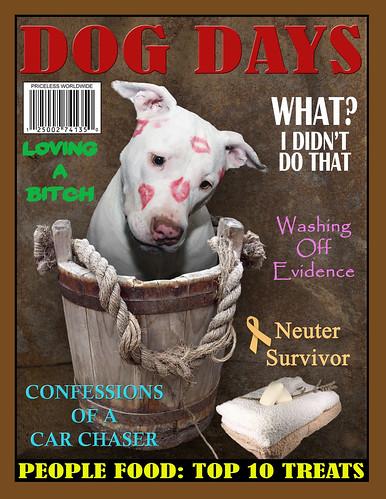Funny Dog Days Magazine Cover Rescued White Puppy Dog Kah