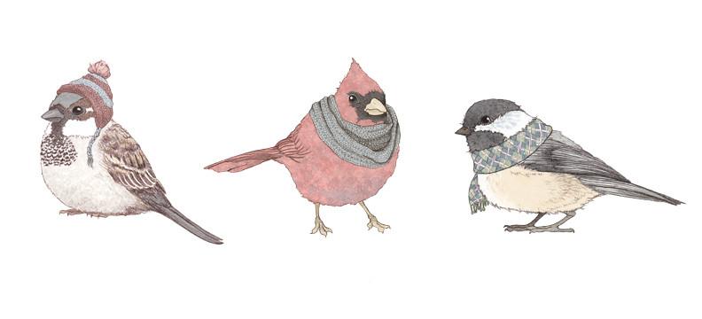 winter birds 2010 | Flickr - Photo Sharing!