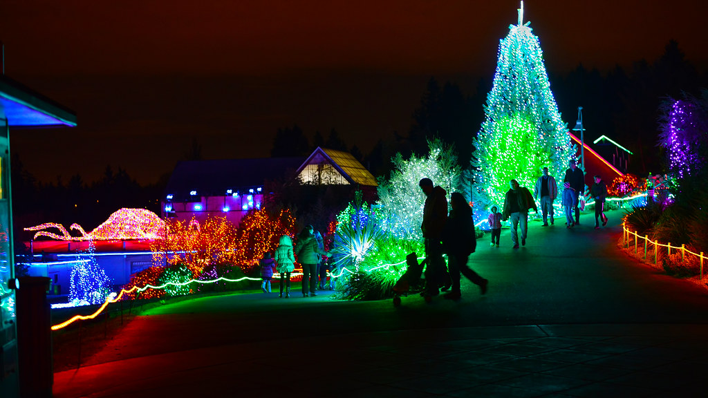 Zoo Lights Point Defiance Zoo