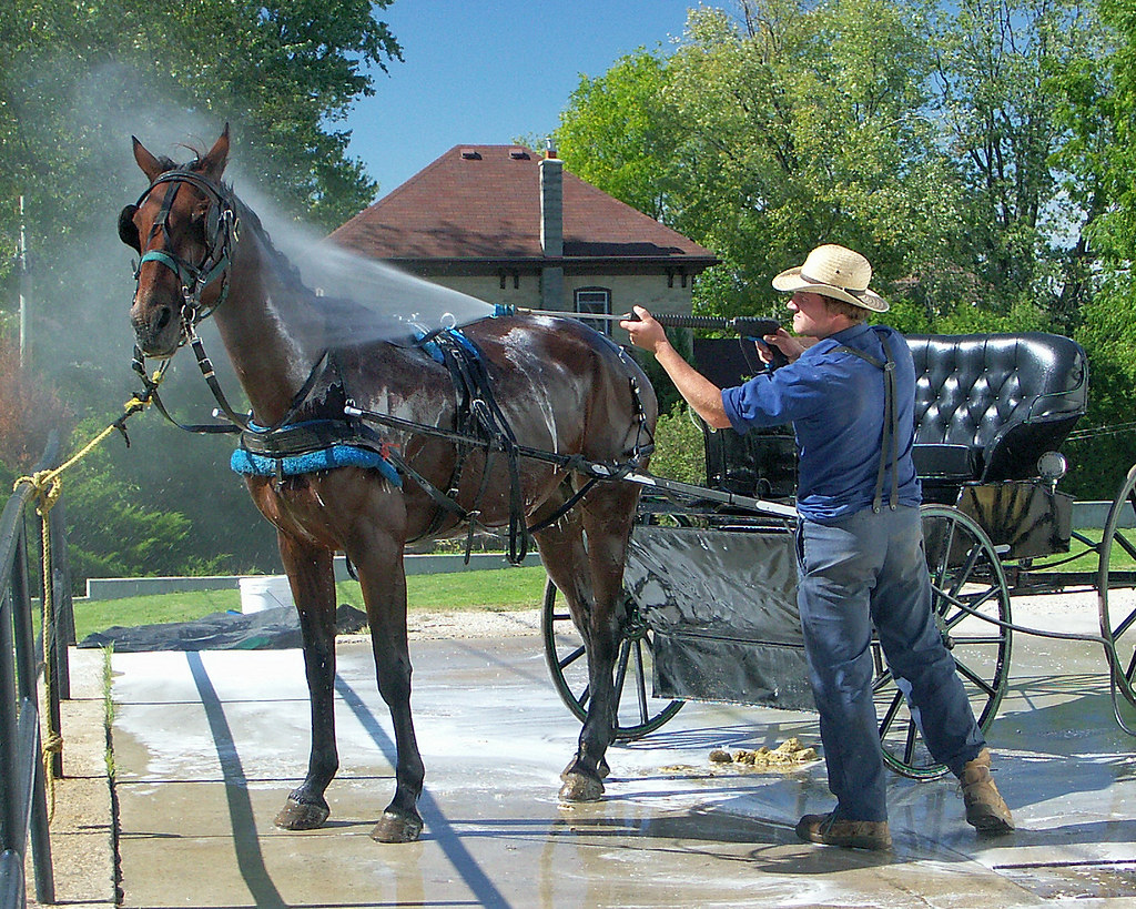 Mennonite Coin Op Horse Wash Just Happening By The Coin