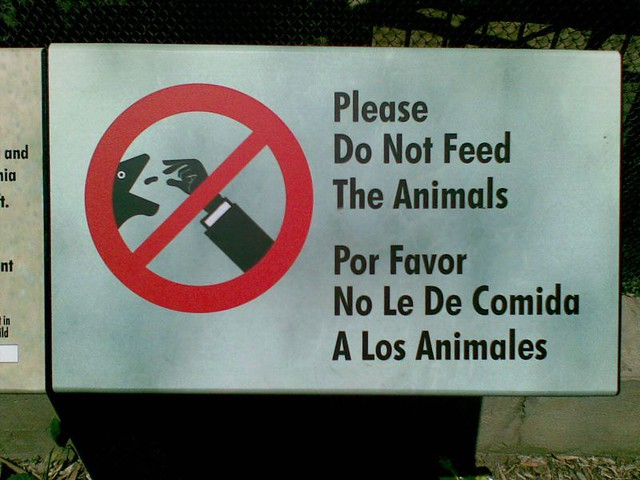 Jobs Do Animals