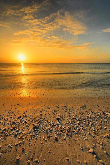 Shells At Sunset, Marco Island Beach, Florida (DSE_0365 ...