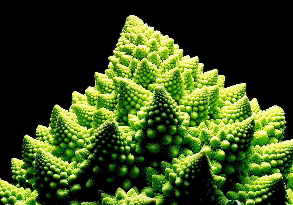 Fractal Romanesco Broccoli A Fractal Romanesco