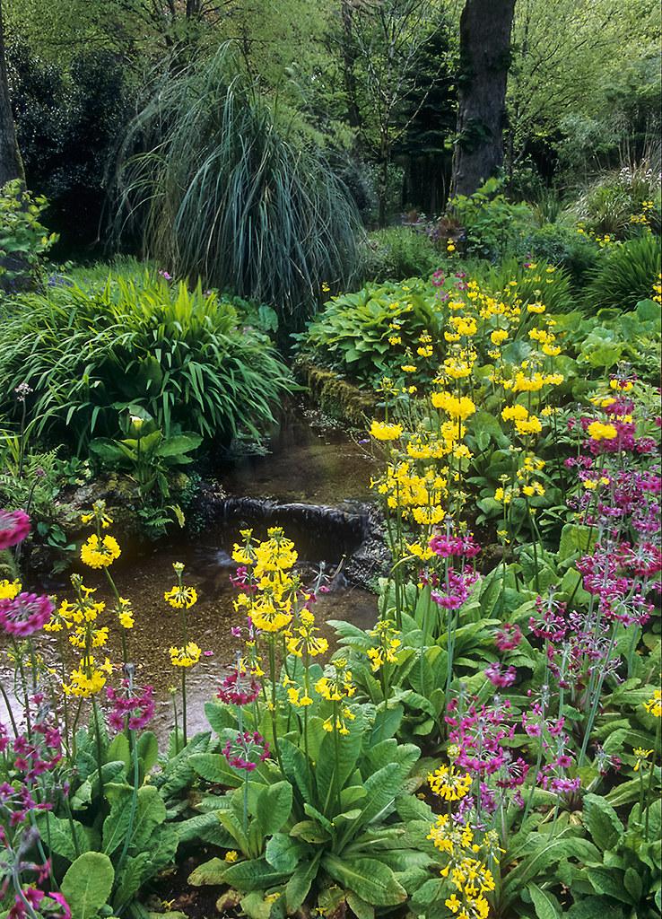 Water In English Gardens 25 Of 33 Trengwainton Gardens