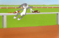 Looney Tunes Episode The Grey Hounded Hare
