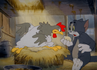 Tom And Jerry Episode Fine Feathered Friend