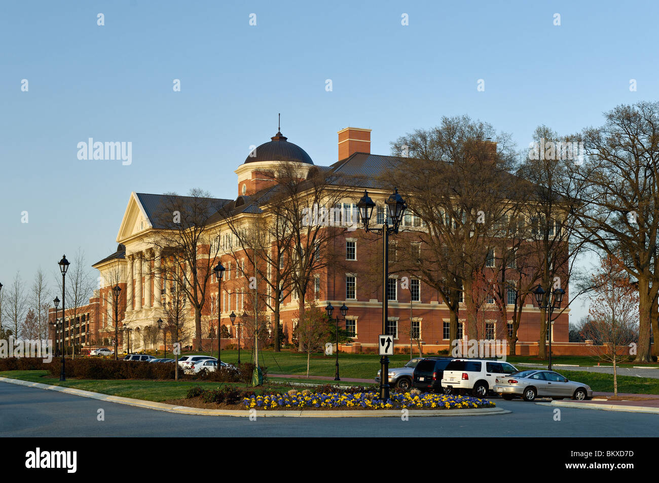 University South Carolina Emblem