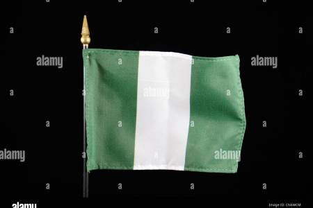 Blank Simple Map Of Nigeria Vector Flag Isolated Stock