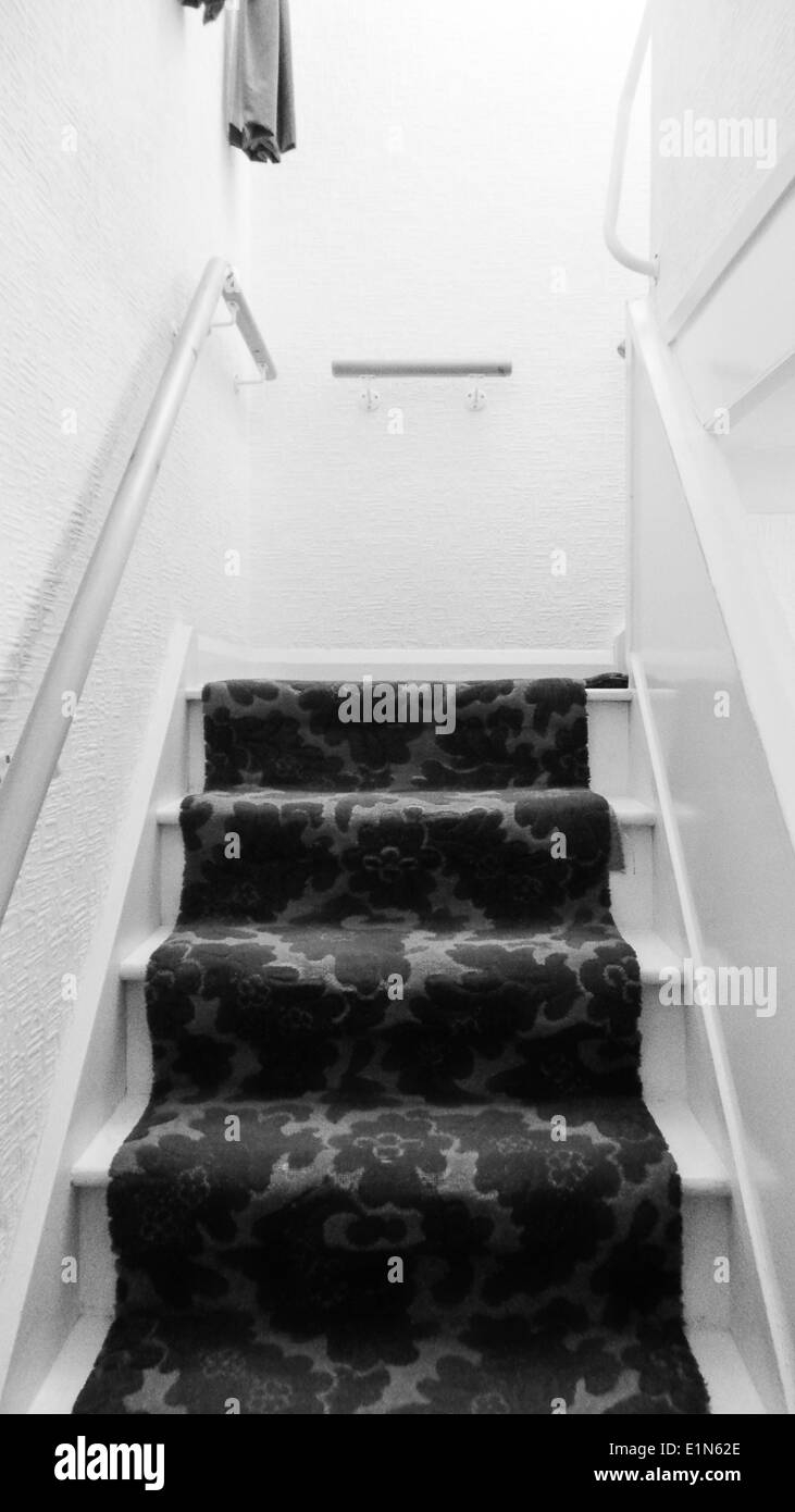 Stairs In Black And White With Flower Carpet Stock Photo Alamy | Black And White Stair Carpet | Entry Hall | Square Pattern | Luxurious | American Style | Small Space