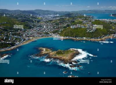 Island Bay and Tapu Te Ranga Island, Wellington, North ...