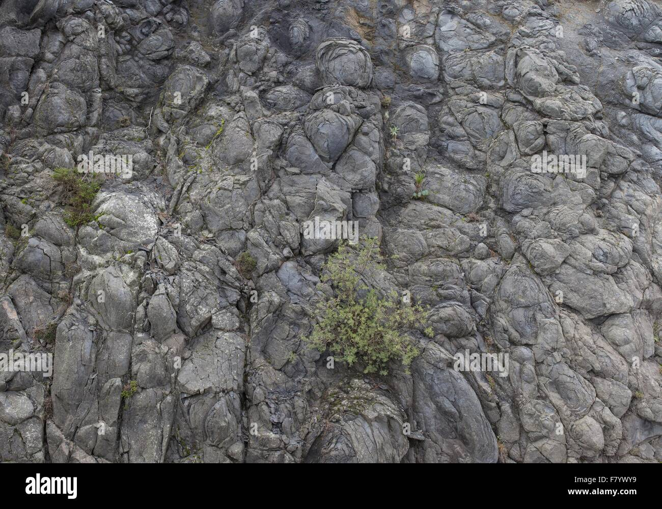 Dark Gray Landscape Rock