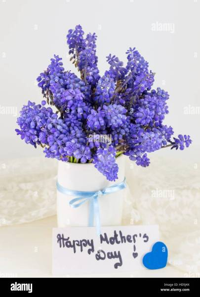 Bluebell flowers bouquet in a vase and happy mothers day note Stock     Bluebell flowers bouquet in a vase and happy mothers day note