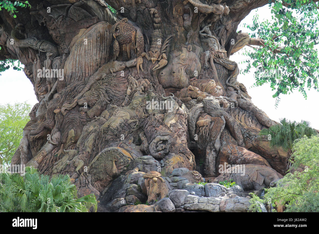 The Tree of Life at Disney s Animal Kingdom in Florida Stock Photo     The Tree of Life at Disney s Animal Kingdom in Florida
