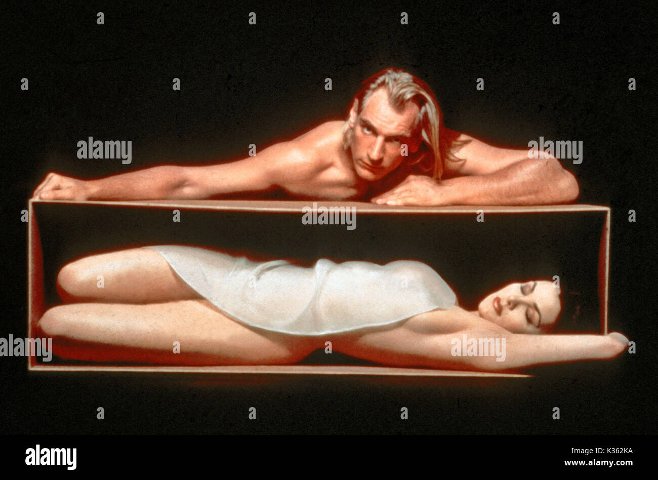 boxing helena images - HD1300×948