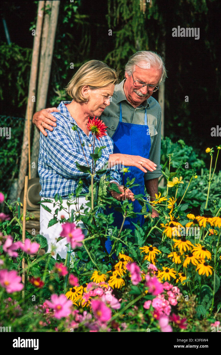 Older Woman Gardening Stock Photos & Older Woman Gardening ...