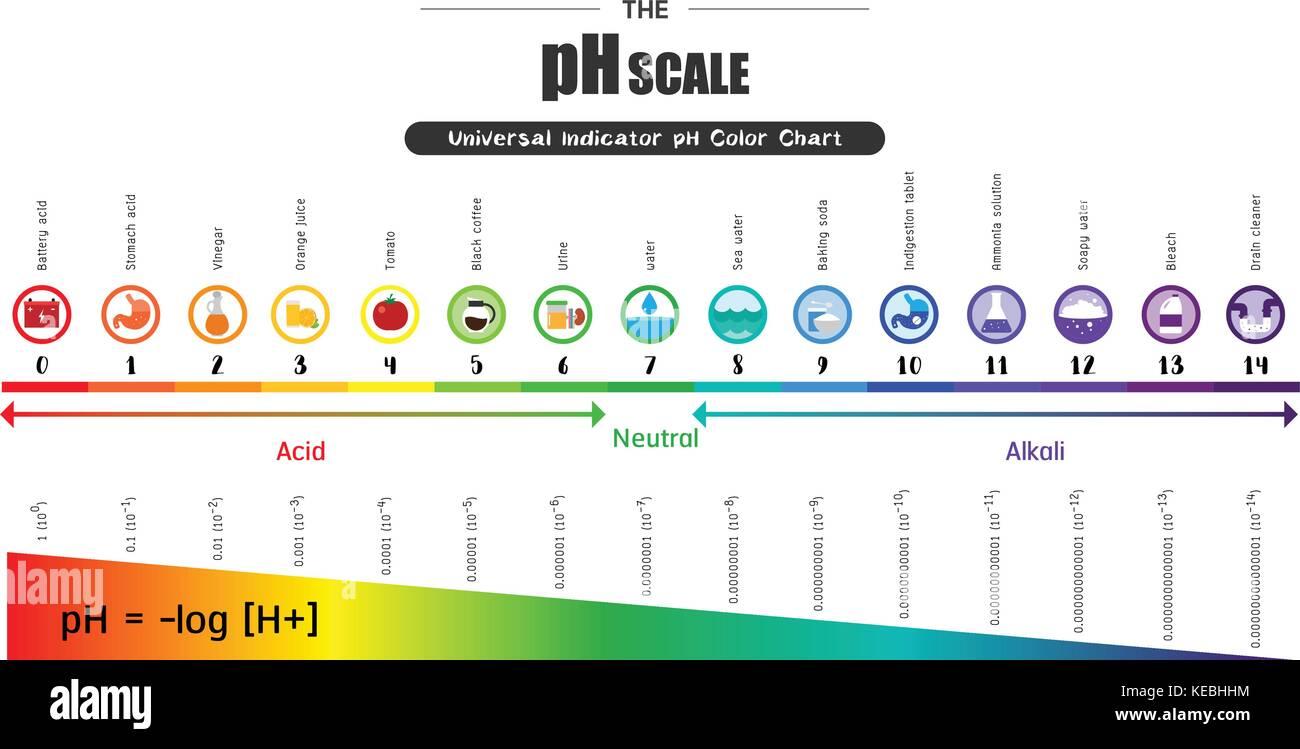 Acid And Alkaline Test Strips