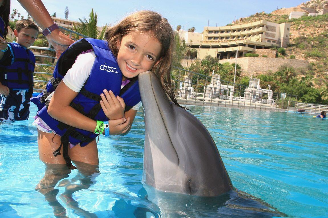 kissed by a dolphin on the dolphin kids program gives a special opportunity to interact and learn about dolphins in los cabos, cabo adventures