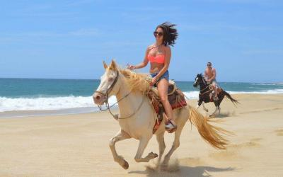 best advanced horseback riding in cabo migrino beach cactus atv tours cabo adventures cabosanlucastours