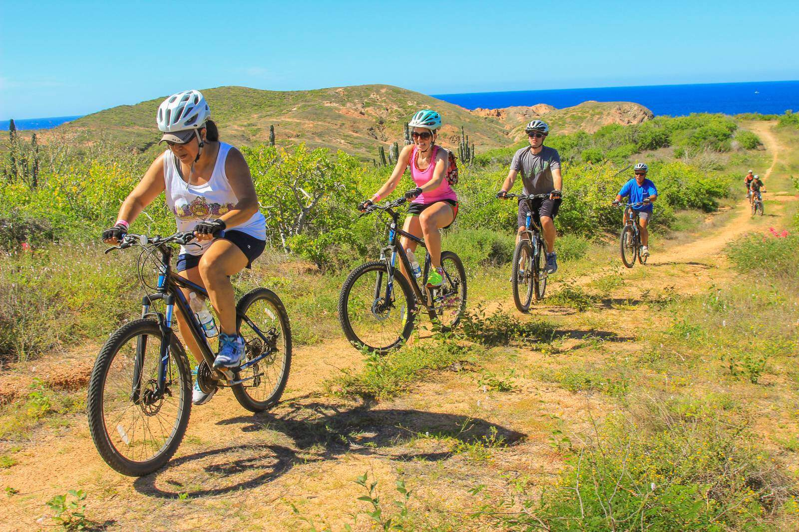 cabo adventures mountain bike tour in los cabos desert ride
