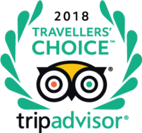 Tripadvisor Cabo Fishings