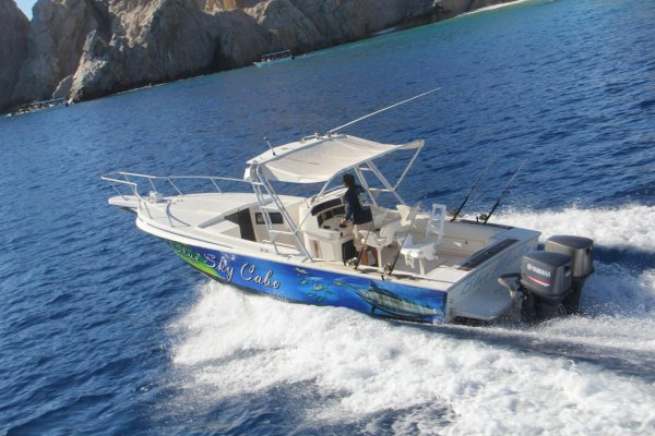 Blue Marlin – 31 Foot Intrepid Express