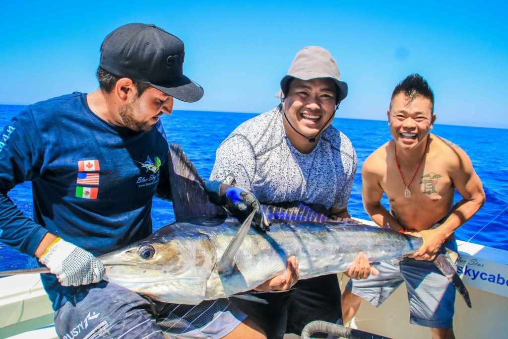 cabo san lucas fishing report