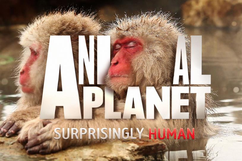 Games Newest Animal Planet