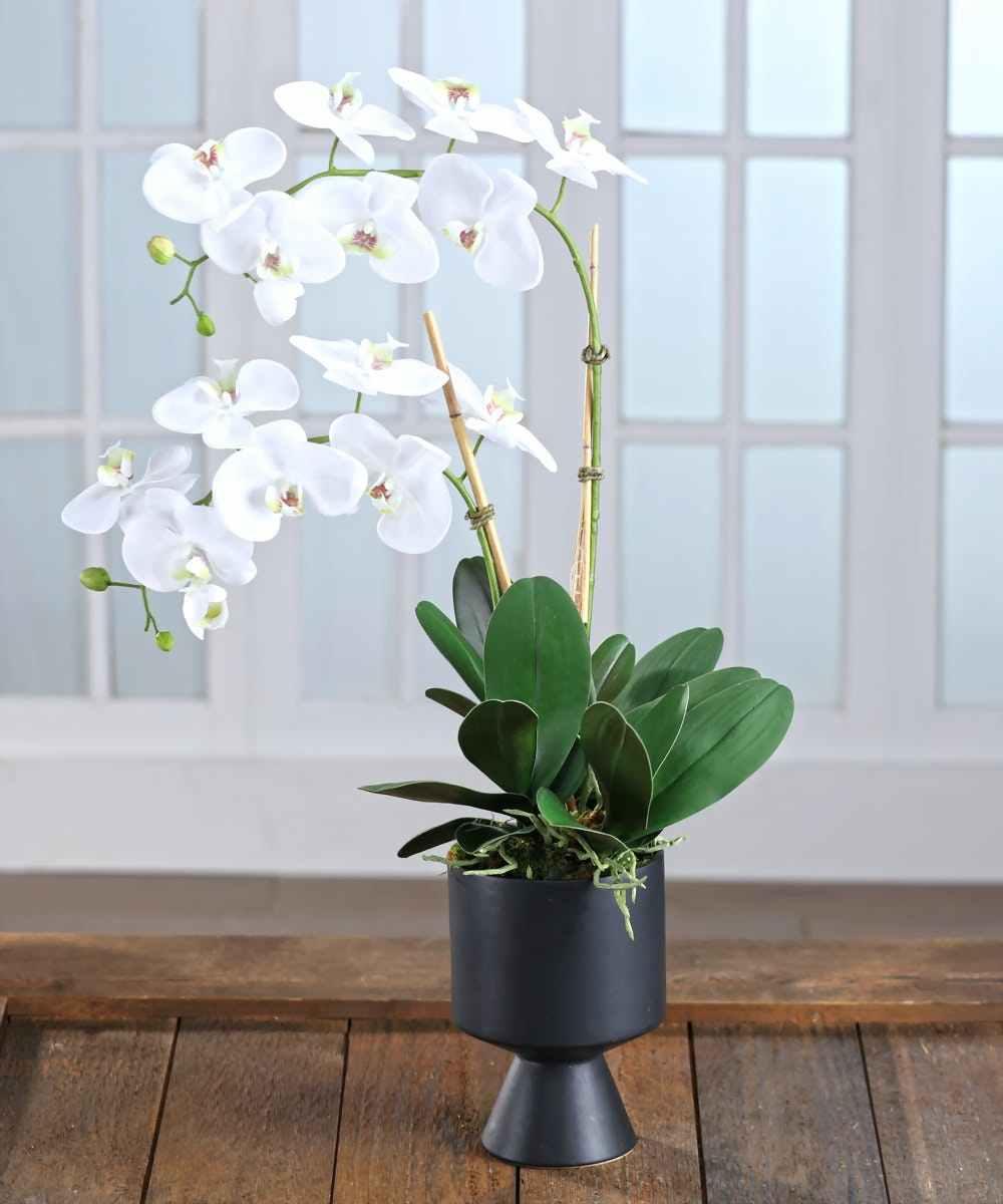 Florist Atlanta: Carithers Flowers - Voted #1 Florist ...