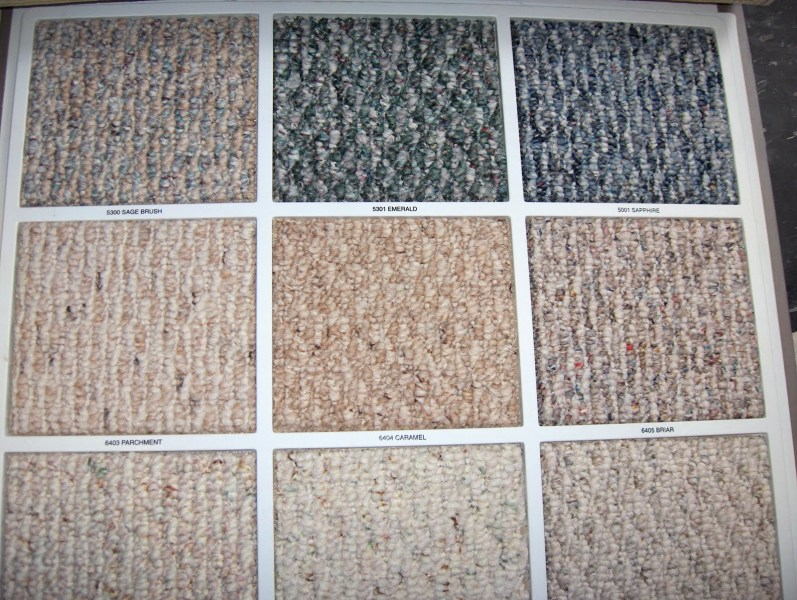 Boston Carpet   Rug Glossary Definition  Berber Carpet     The Carpet     Berber Carpet