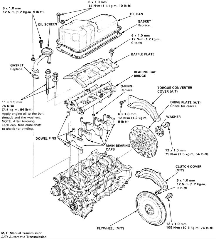 2005 Honda Accord Clutch Diagram