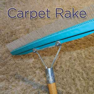The Benefits of Carpet Grooming   Carter s Carpet Restoration carpet grooming  carpet rake  carpet care