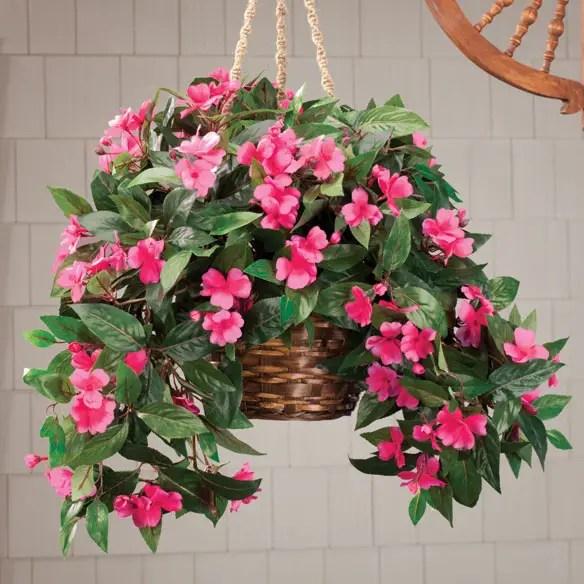 Hanging Flowering House Plants