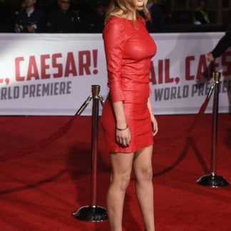 Celebrity Dresses Tight Skirt