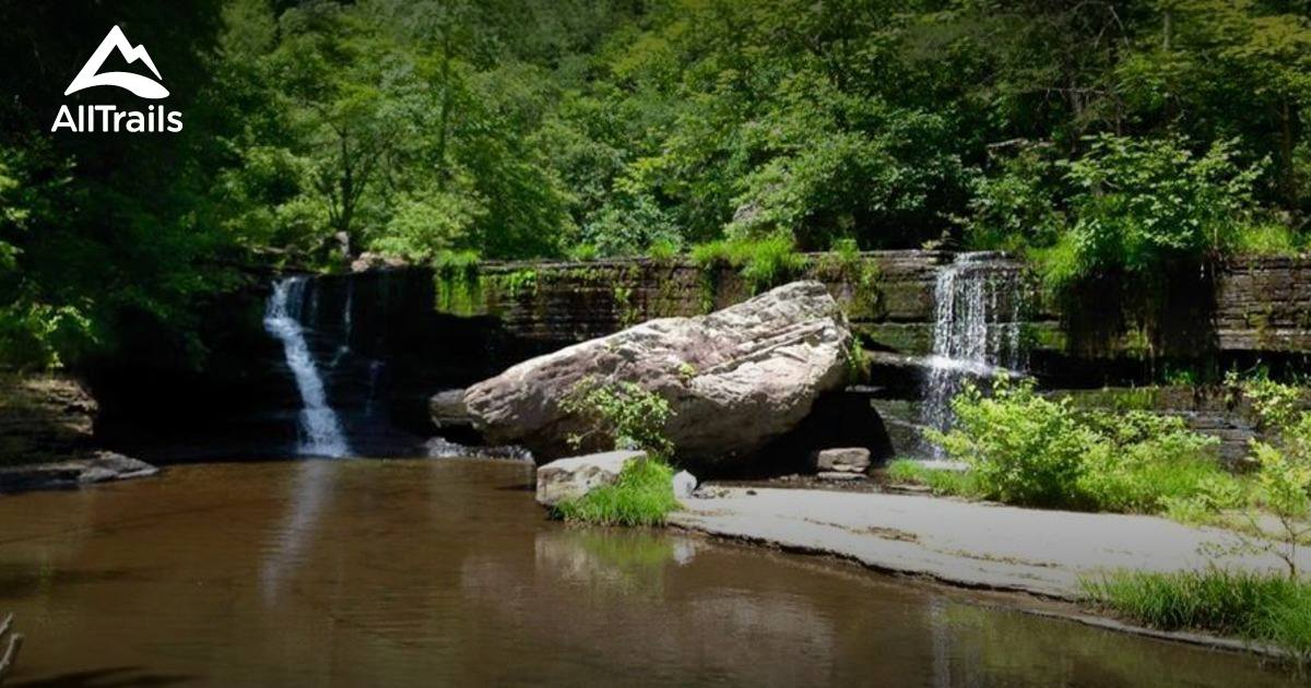 Best Trails In Savage Gulf State Natural Area Tennessee