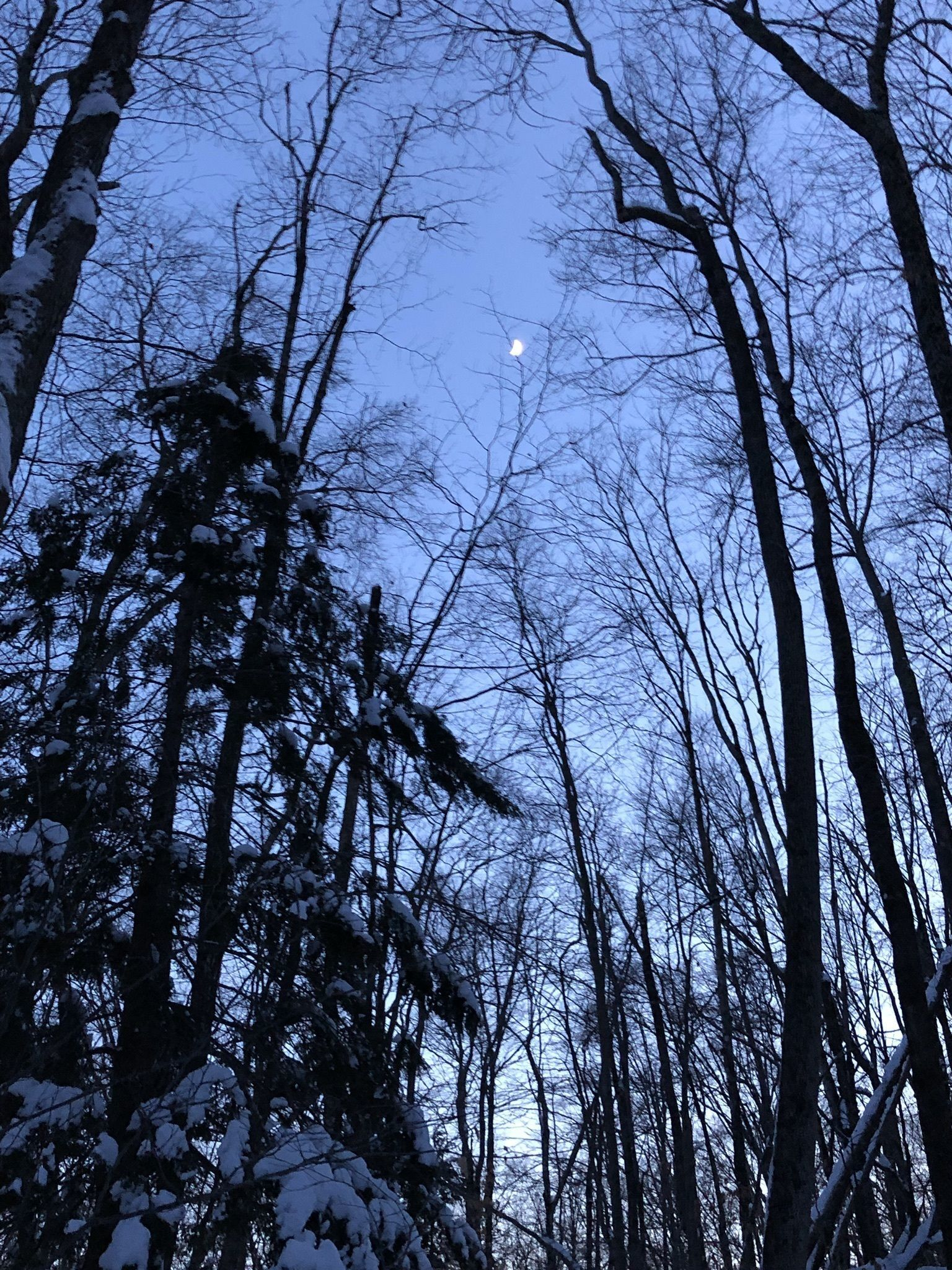 Best Trails In Franconia Notch State Park New Hampshire