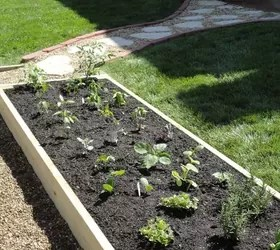 What Wood Use Raised Vegetable Garden