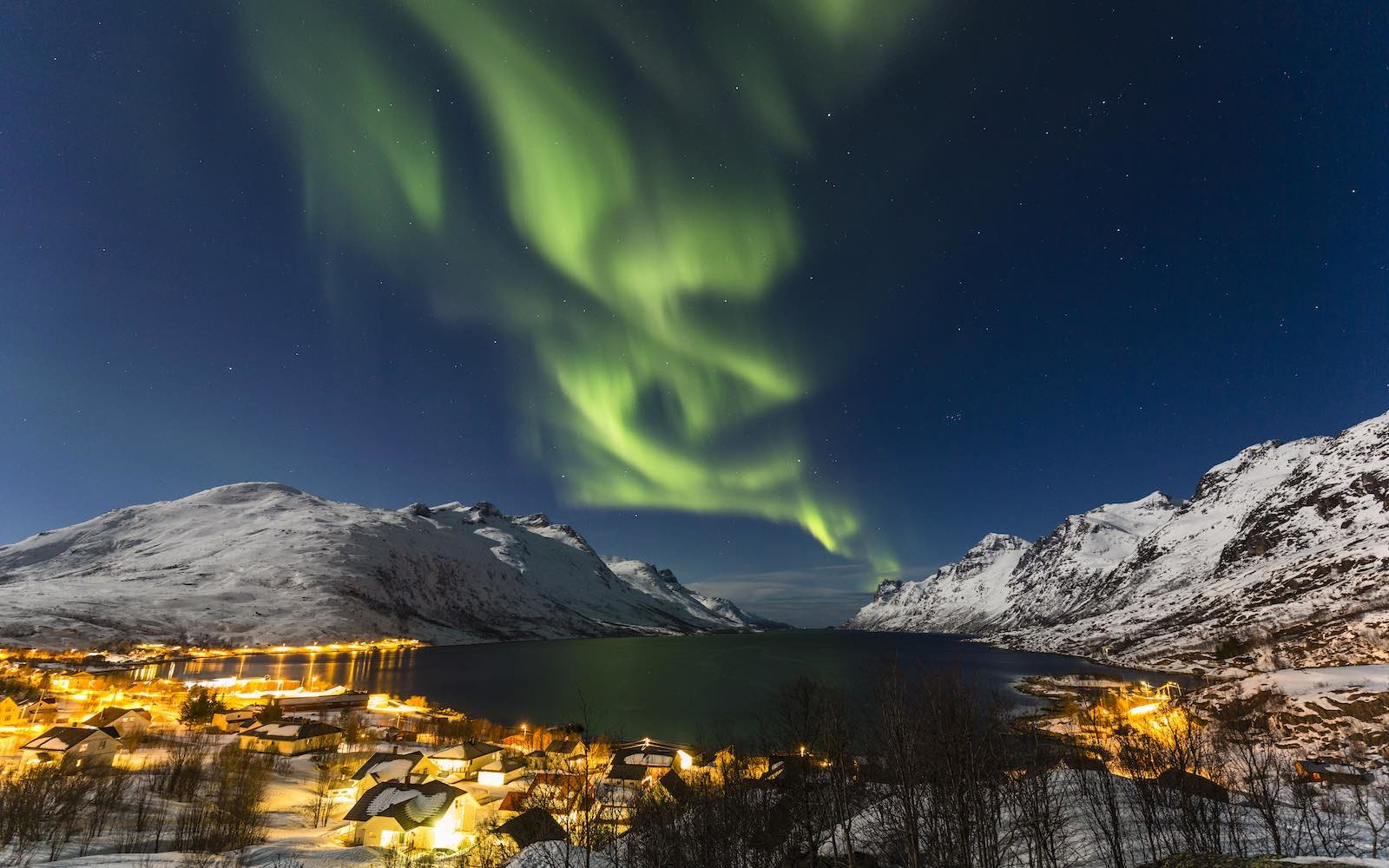 Northern Lights Festival Tromso