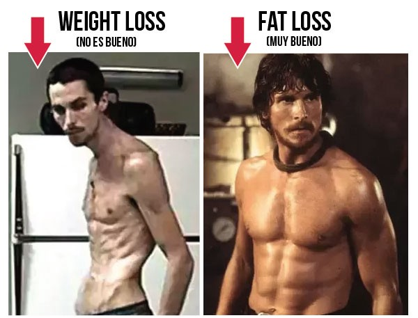 Muscle Gaining Vs Weight Losing