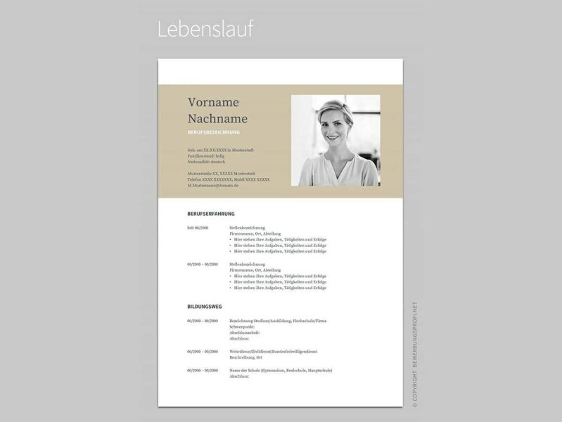 Google Docs Resume Templates  10 Examples to Download   Use Now google docs resume sample with beige header