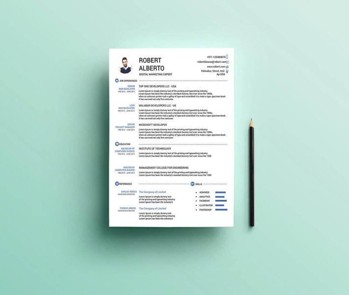 Resume Templates for Word  FREE   15  Examples for Download free resume template for word with picture